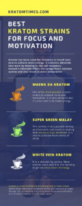 kratom for focus and motivation infographic