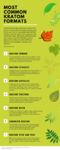 most common kratom formats infographic