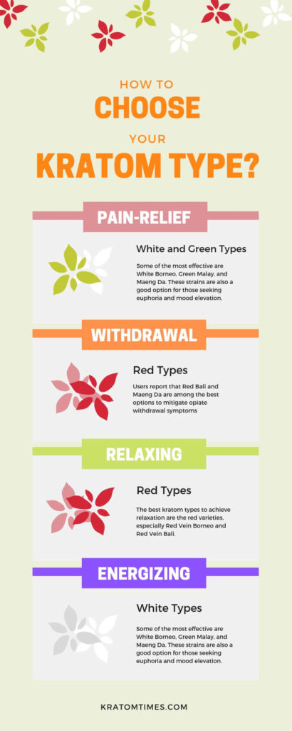 how to choose your kratom type infographic