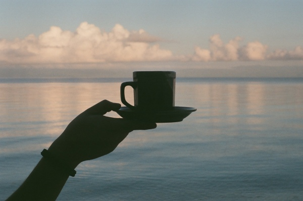 A hand holding a cup of kratom tea